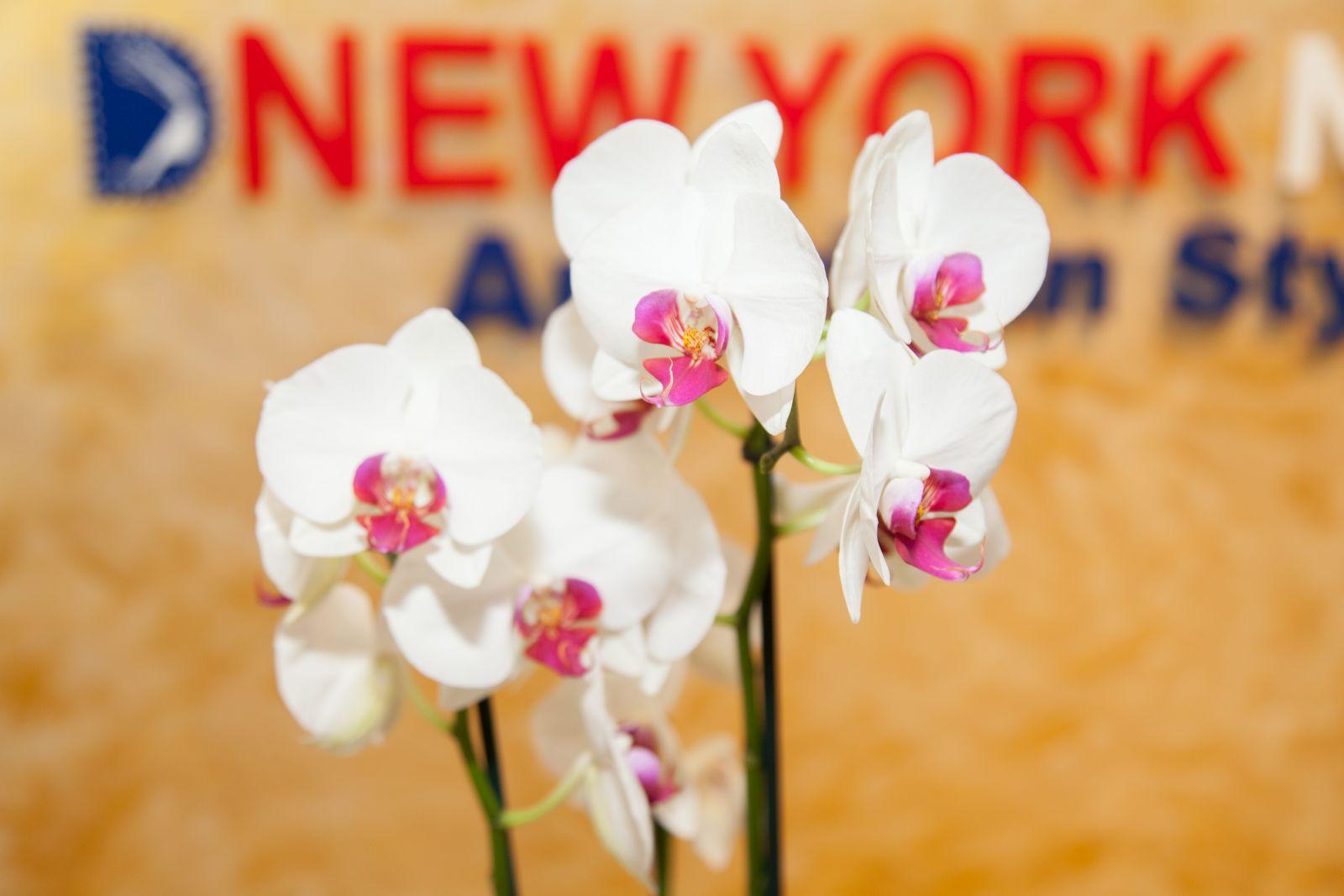newyork-nails-0017